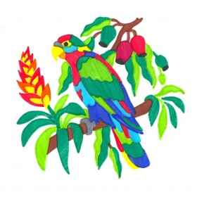Amazon Parrot ColorFoldz Self-Aligning Stencil